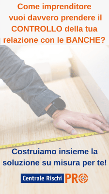 Banner servizio su misura per le imprese Centrale Rischi PRO